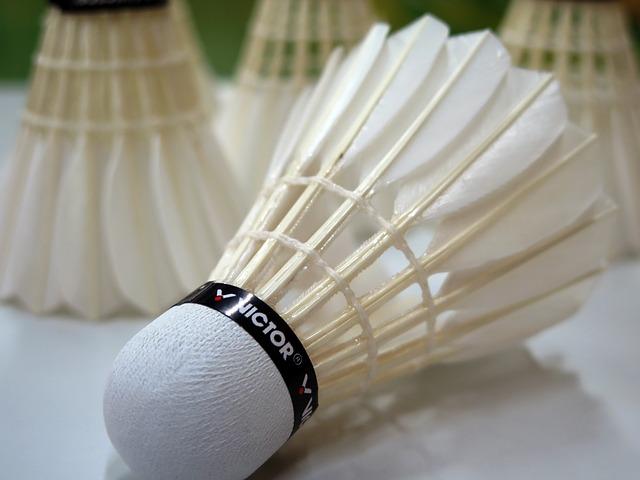 Badminton - Naturfederball