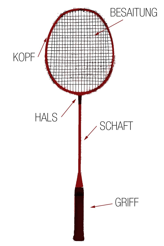 Informationsgrafik Badmintonschläger
